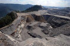 الإقبال المتزايد على الفحم يعيق الحفاظ على البيئة