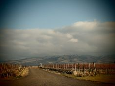 The Four Best Things About Walla Walla  - My last Seattle Weekly column!