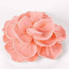 How to Make Buttercream Carnations - A carnation is a welcomed flower in any season! Try it with a striped bag (stripe on narrow tip side) for lovely color variation.