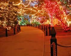 """Las Vegas - Ethel M's Chocolate Factory Tour Month of December also brings """"Christmas at the Cactus Gardens"""" Beautiful Magical Christmas, Christmas Love, Outdoor Christmas, Beautiful Christmas, Winter Christmas, All Things Christmas, Merry Christmas, Xmas, Christmas Heaven"""