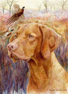 vizsla painting - Google Search