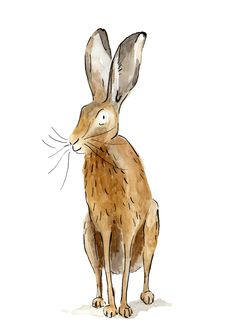 Hare by Rosie Young