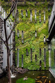 Este jardín vertical conecta los interiores sociales de la casa con el exterior, dando una sensación biofílica inigualable. Vertical Gardens, Interiors, Houses, Landscaping, Succulents, Architecture, Gutter Garden