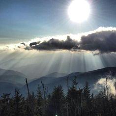Smoky Mt. glory