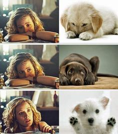 Delphine - Orphan Black - she really is cute as a puppy