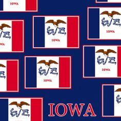 Smartphone Case - State Flag of Iowa - Patchwork Blue