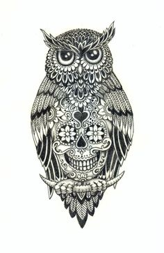 Owl With A Sugar Skull Under Belly