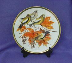 Evening Grosbeak Woodland Birds of the World Plate offered by Antique Beak