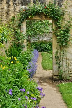 Unique photo - kindly visit our website for a lot more tips and hints! Back Gardens, Small Gardens, Outdoor Gardens, Garden Landscape Design, Garden Landscaping, Cottage Garden Borders, British Garden, California Garden, Flora