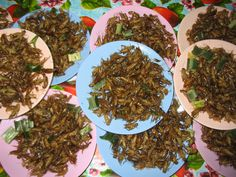 #thaifastfood How To Dry Basil, Herbs, Food, Herb, Meals, Yemek, Spice, Eten