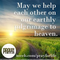 Reflect, learn, and act w/ November's short Pray for Life guide! Respect Life, Life Guide, Divine Mercy, Flesh And Blood, End Of Life, Gods Grace, Pro Life, Pilgrimage, Life Images