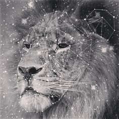 Leo zodiac star constellation pic by TheRavensDaughter.com