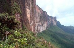 Mount Roraima, Venezuela/Brazil/Guyana - Wikipedia -- The steep rock wall of Monte Roraima. Monte Roraima, Mountain Formation, Steep Rock, Costa, Paradise Falls, Above The Clouds, South America Travel, Wonderful Places, Amazing Places