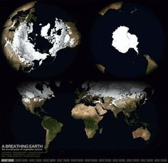 How Earth's ice cover varies over seasons. | 17 GIFs That Will Make You Smarter In Just A Few Seconds