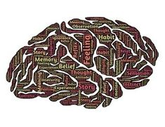 High School Electives: Psychology - Why we chose psychology as a high school elective and how we go about fulfilling high school & college credits with it. Homeschool High School, Homeschool Curriculum, Dance Movement, Traumatic Brain Injury, Right Brain, Subconscious Mind, Dyslexia, Neuroscience, Marketing