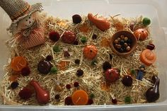Late fall sensory bin - I can see having some yarn in there with the straw and beads and maybe some fall color dyed noodles and have this one be about fine motor and hand-eye coordination, plus pattern making, etc