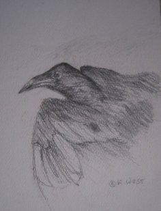 NEW LISTING Fallen Bird ORIGINAL PENCIL DRAWING  Dead Bird  Black and