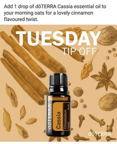 doTERRA essential oils Tuesday Tip Off Add a drop of doTERRA Cassia essential oil to your morning oats for a lovely cinnamon flavored twist Cassia Essential Oil, Cinnamon Essential Oil, Essential Oil Uses, Doterra Essential Oils, Essential Oil Supplies, Essential Oil Storage, Cinnamon Oil, Diffuser Recipes, Young Living Oils