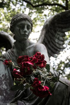 Hamburg - Ohlsdorf Cemetery | by Skyart82