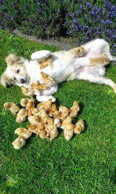 Familia feliz!!!
