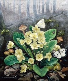 Primula Vulgaris - Primrose Every spring, the intense color of wild flowers sprouting among the dead leaves reminds us that magic is closer than we think. This is why, in this cycle of eternal rebirth, a simple turf can contain the universe. Oil Painting Flowers, Oil Painting On Canvas, Silver Leaf Painting, Botanical Prints, Wild Flowers, Closer, Contemporary Art, Universe, Leaves