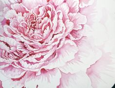 Someday I'll paint like this...Pink Peony by Helen Klebesadel
