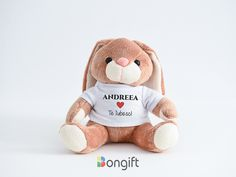 Oferă un cadou unei persoane speciale. Un animăluț de pluș cu tricou personalizat poate fi un cadou inspirat! Teddy Bear, Toys, Activity Toys, Clearance Toys, Teddy Bears, Gaming, Games, Toy, Beanie Boos
