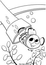 Finding Nemo and more free coloring pages for kids including Disney movie coloring pictures and kids favorite cartoon characters Finding Nemo Coloring Pages, Disney Coloring Pages, Coloring Pages To Print, Free Printable Coloring Pages, Coloring Pages For Kids, Coloring Books, Favorite Cartoon Character, Online Coloring, Printable Crafts