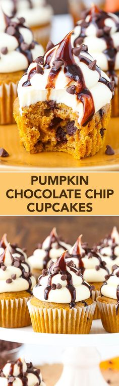 How to make pumpkin chocolate chip cupcakes. Pumpkin Chocolate Chip Cupcakes with Cream Cheese Frosting Fall Desserts, Just Desserts, Delicious Desserts, Dessert Recipes, Gourmet Cupcake Recipes, Healthy Desserts, Dinner Recipes, Food Cakes, Cupcake Cakes