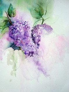 Lilac Watercolor Paintings | In this photo you can just about see where the initial washes were ...