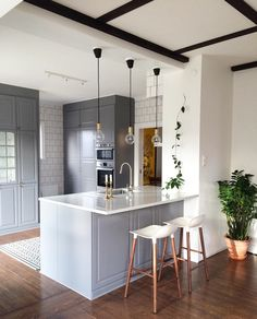 Grey kitchen ideas brings an excellent breakthrough idea in designing our kitchen. Grey kitchen color will make our kitchen look expensive and luxury. Bodbyn Kitchen Grey, Grey Kitchens, Home Kitchens, Small Kitchens, Bodbyn Grey, Kitchen White, Kitchen Vent, Ikea Kitchen, Kitchen Decor
