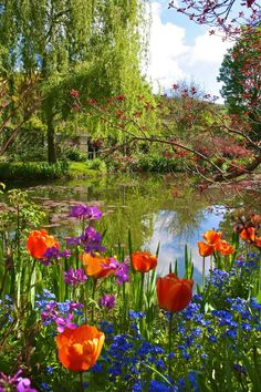 Monet's Garden, Giverny, France There is so much more. Monet painted his land as well as canvas Beautiful World, Beautiful Gardens, Beautiful Flowers, Beautiful Places, Beautiful Pictures, Giverny France, Parcs, Claude Monet, Dream Garden