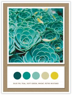 blue fir, teal, soft green, wheat, retro mustard