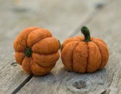 Needle Felted Pumpkin