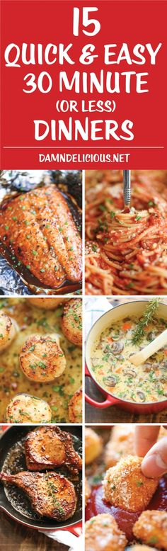15 30 minute or less recipes