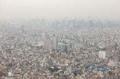 Tokyo from Skytree by Mamlo Connection