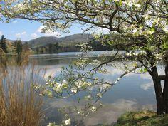 VISIT- Beaver Lake (Asheville, NC)