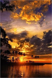 The Nicest Pictures: sunset