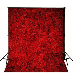 5X7 FT Wedding Studio Background Photography Backdrops Re... https://www.amazon.com/dp/B01MZ4KIFV/ref=cm_sw_r_pi_dp_x_eW5RybEEV4KEQ