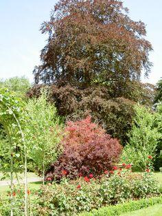 Spetchley Park Garden - Mieke Löbker - Picasa Webalbums