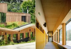 Architecture by me: Paul Chevallier ,Tectoniques Architects' wooden school with accessible roof garden completes in Lyon
