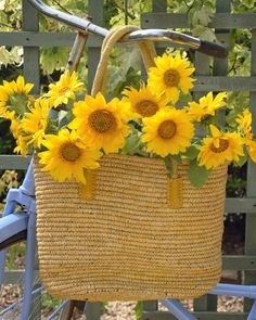 "Legend has it that when Spanish explorers reached the Americas, they thought sunflowers were made of real gold. Of course, they were wrong, hence the meaning ""false riches.""   - HouseBeautiful.com"