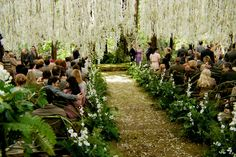one of the most beautiful wedding ceremony landscapes ever .. breaking dawn wedding. LOVE the ferns and bent greenwood benches.