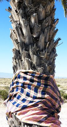 Co-founder of Epice Jan Machenhauer revisits the red and blue check patterns of the Masai in the colours of Epice: earth, ochre, sand, black, sky blue… Heavy Blanket, Blue Check, Ciel, Warm Weather, Red And Blue, Scarves, Textiles, Earth, Sky