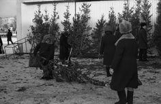 Женщина с новогодней красавицей. Новокузнецк, 1982 год.