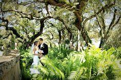 Vizcaya wedding photography, vizcaya bride