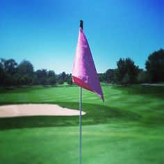 Pink flags dotted the course at the Vera Bradley Foundation for Breast  Cancer Classic Women s Golf b2b906006eb6