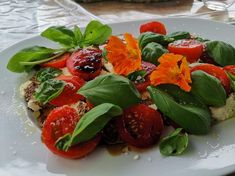 Rate this post Caprese – (Mozzarella mit Tomaten und Basilikum) Caprese – (Mozzarella mit Tomaten und Basilikum) Mozzarella, Tapas, Caprese Salad, Food, Basil, Tomatoes, Meal, Homemade, Easy Meals