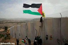 Viva Palestina