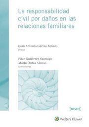 La responsabilidad civil por daños en las relaciones familiares